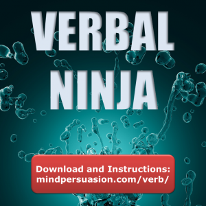 Verbal Ninja – Win All Arguments – Defeat All Objections – Persuade Anybody of Anything